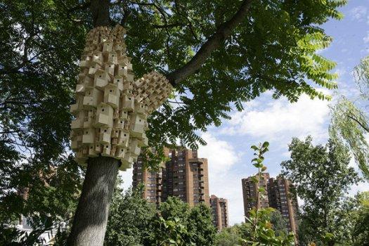 Art Installations On Trees 2