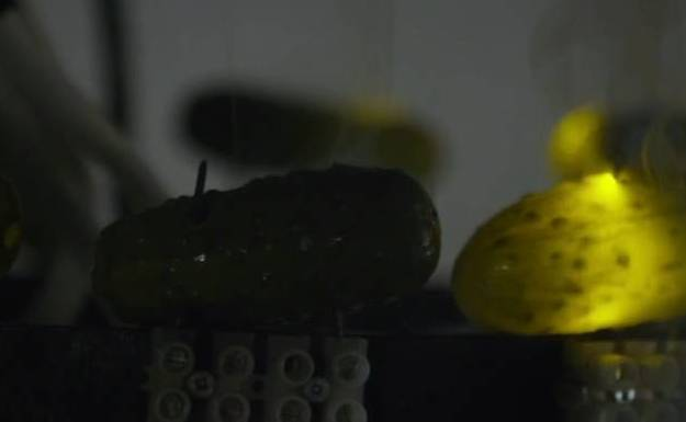 gherkin-chandelier-close.jpg