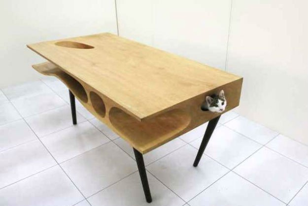 catable.jpg