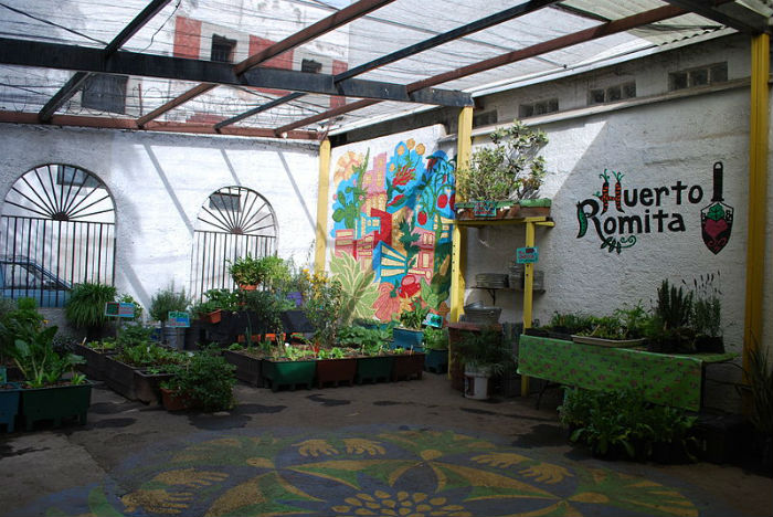 HuertoRomita_MexicoCity_urbanfarm.jpg