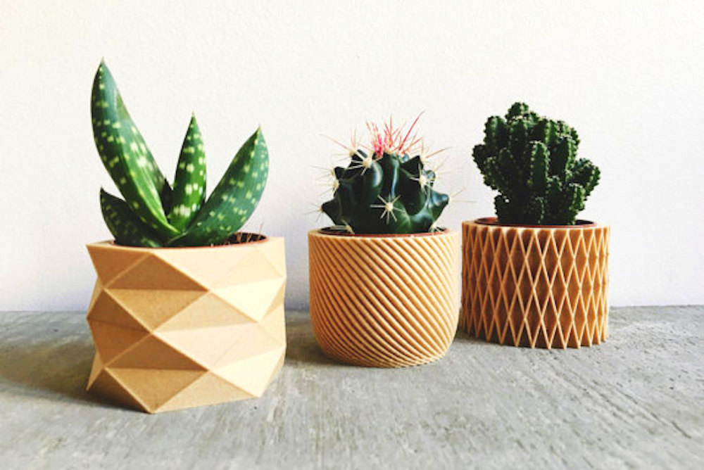 Biodegradable Planters Built From 3D-Printed Wood