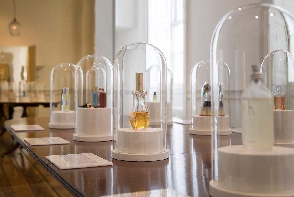 Exhibition Shows How Fragrances Help Explain The World