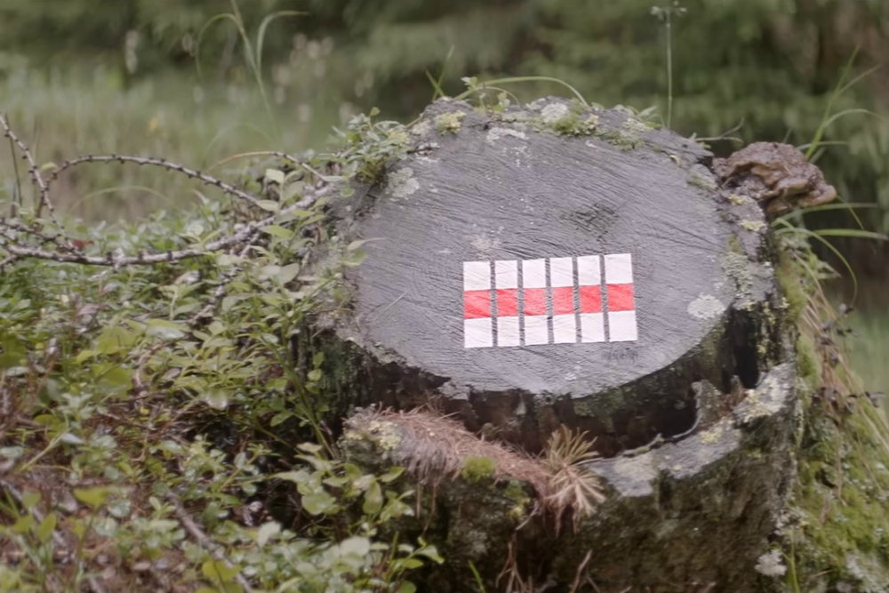 Designer Creates Miniature Works Of Art Out Of Trail Markers