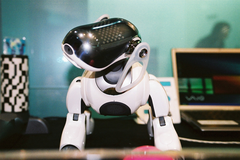 Sony Is Bringing Its Robotic Dog Project Back To Life