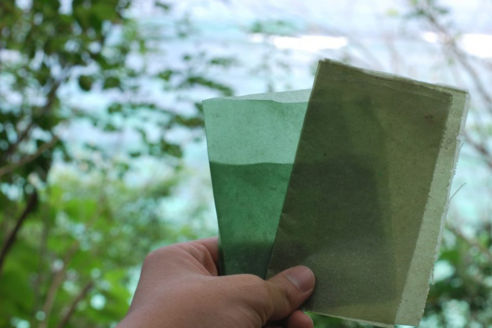 This Bioplastic Food Wrapper Is Meant To Be Eaten