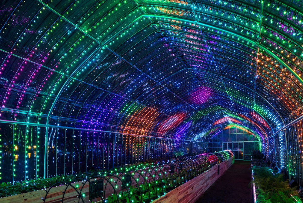 Tokyo Greenhouse Lights Up When You Touch The Plants Inside