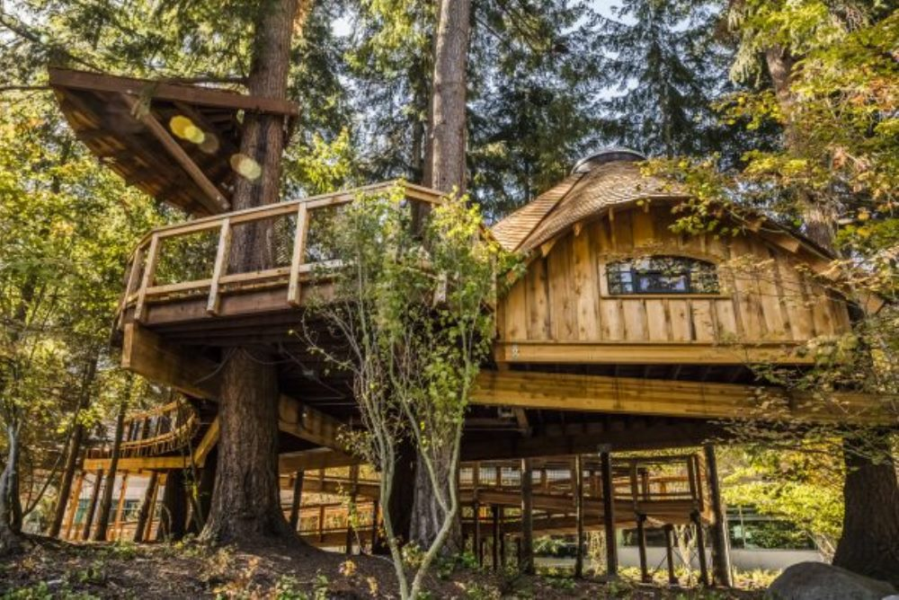 Microsoft Is Building Treehouses For Employees To Spark Their Creativity