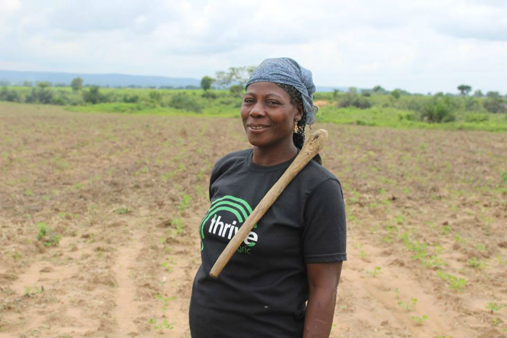 Tech Startups Are Helping Nigerian Farmers And Funders Connect