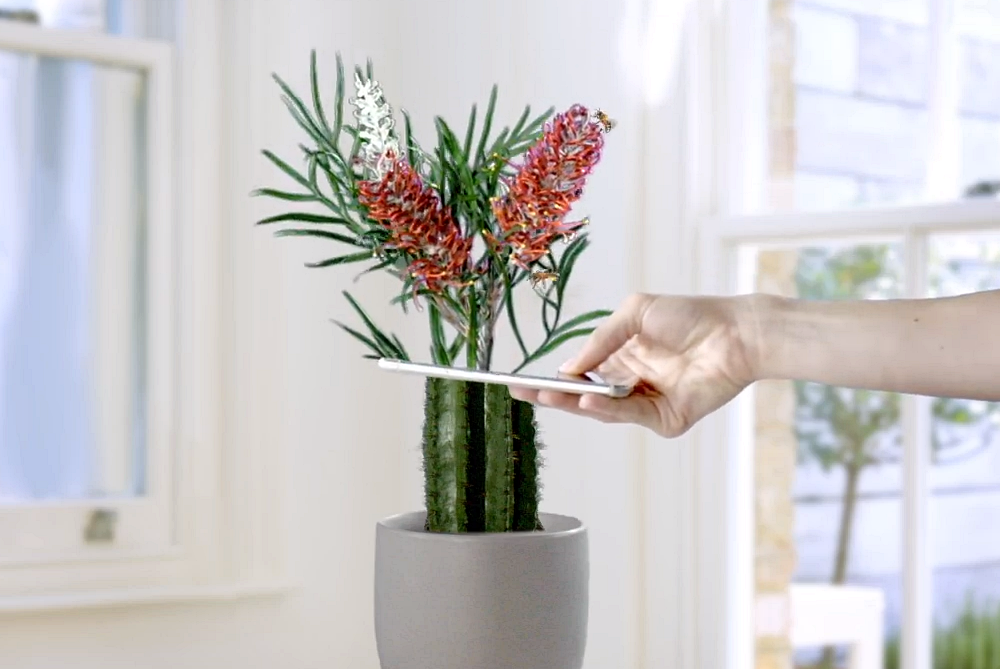 This App Helps Users Visualize The Best Plants For Their Home
