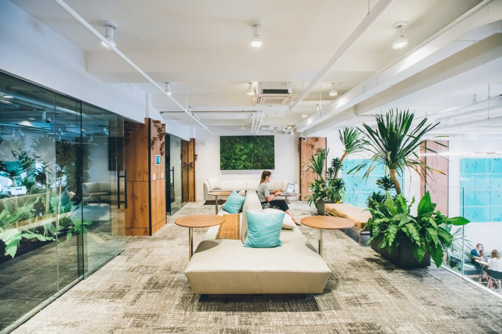 Coworking Space Is Based On Mindfulness And Transformation