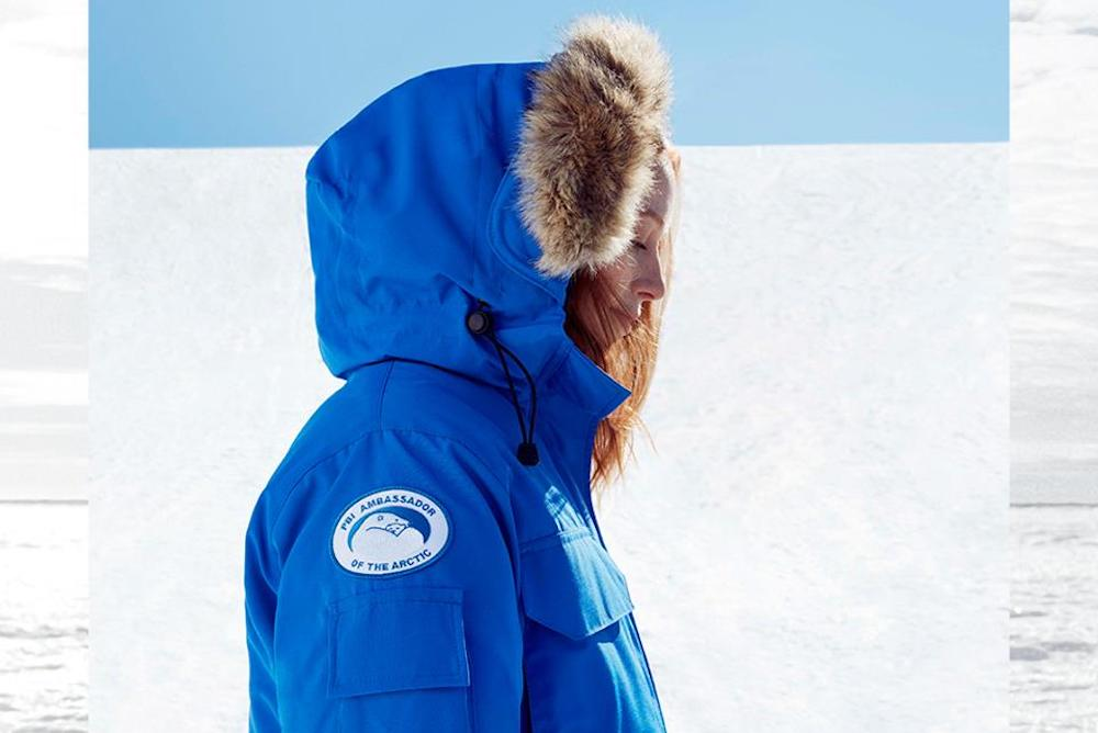 Canada Goose And Pantone Campaign In Color To Save The Polar Bears