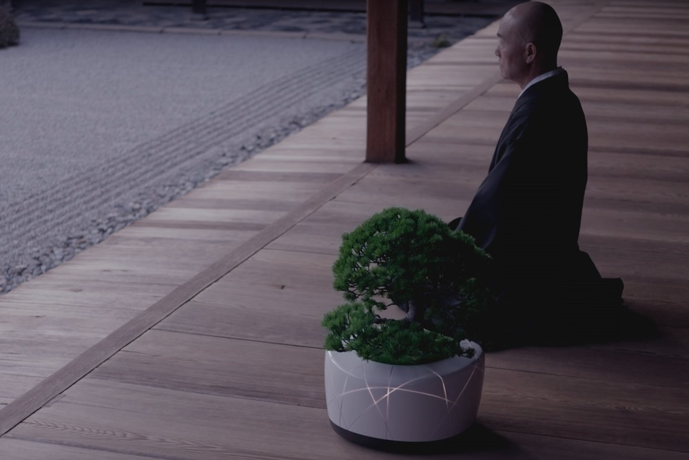 This Interactive AI Bonsai Plant Provides Emotional Support