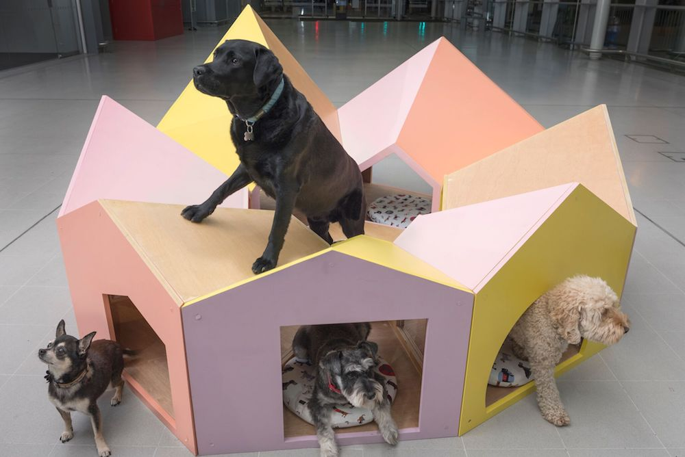 Fundraiser Auctions Off Fancy 'Barkitecture' Dog Kennels