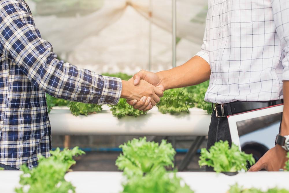 IKEA And Tom Dixon Encourage Urbanites To Grow Their Own Food