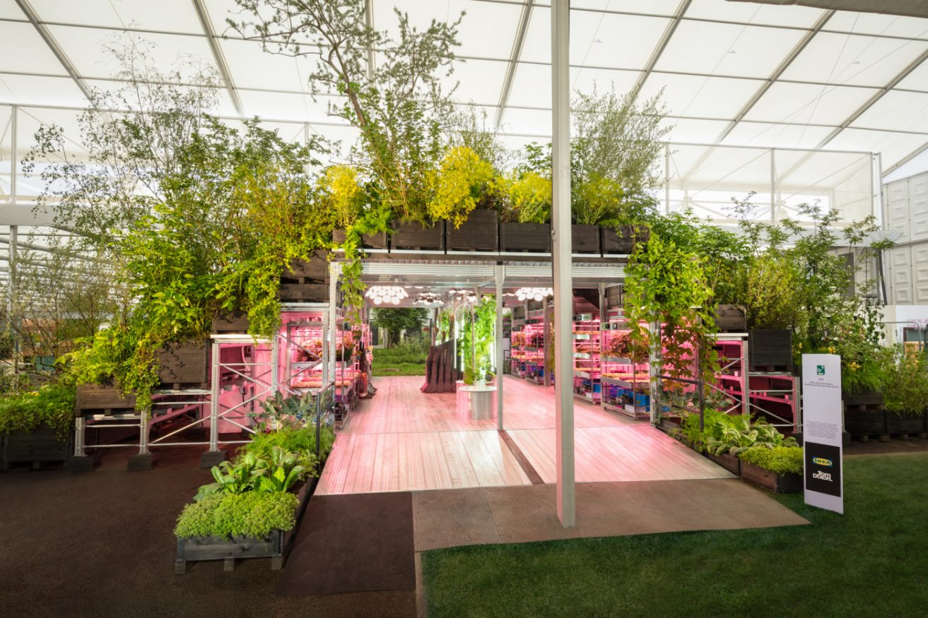 How IKEA Is Democratizing Gardening To Build A More Sustainable Future